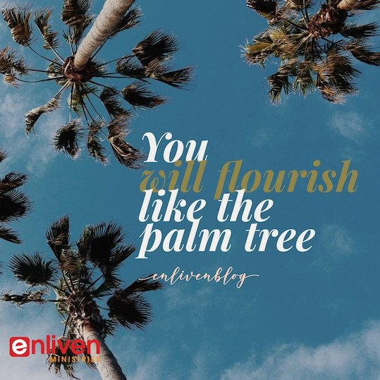 Lessons from the Palm Tree