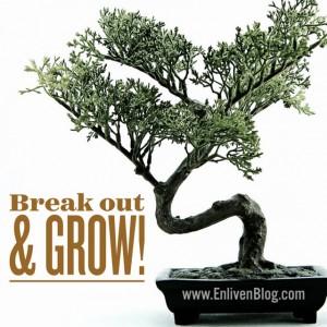 Grow Your Prophetic Gift