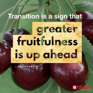 Signs of Transition in Ministry
