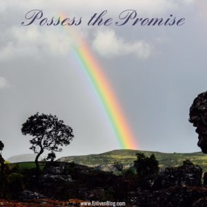 Possess the Promise from God