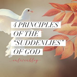 4 Principles of the Suddenlies of God