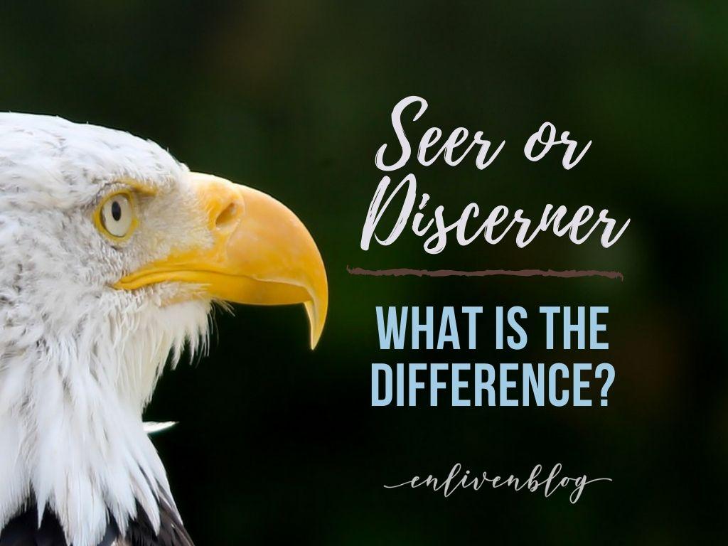 Seer or Discerner