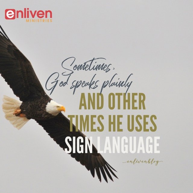Sometimes God Speaks Plainly and Other Times He Uses Sign Language, Eagle flying Sign Language