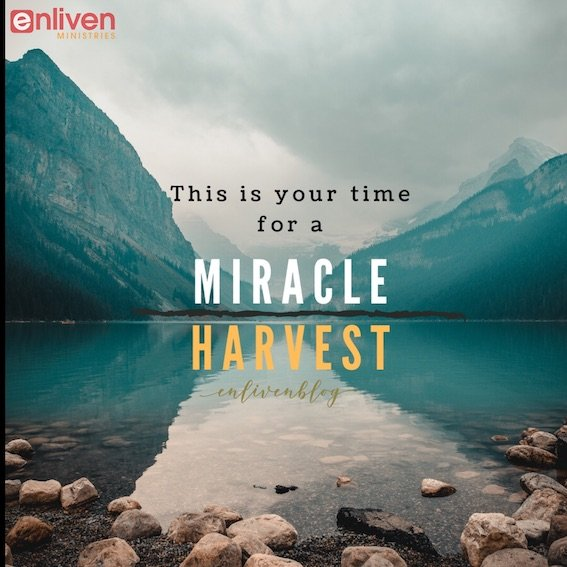 This is your time for a miracle harvest, lake, mountains