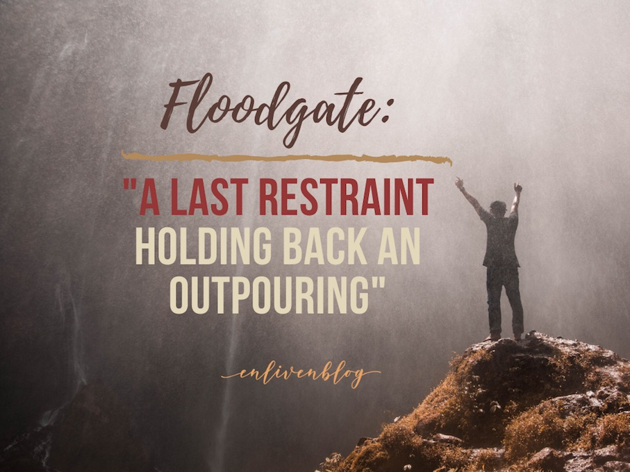 Floodgate, a last restraint holding back an outpouring