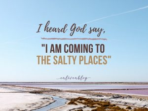 "I heard God say, ""I cam coming to the salty places, salt flats and water"