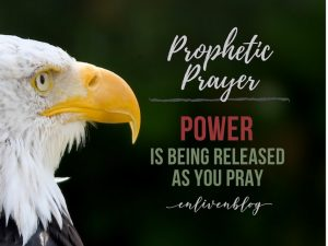 """Eagle's face, """"Prophetic Prayer: Power is being Released as You Pray"""""""