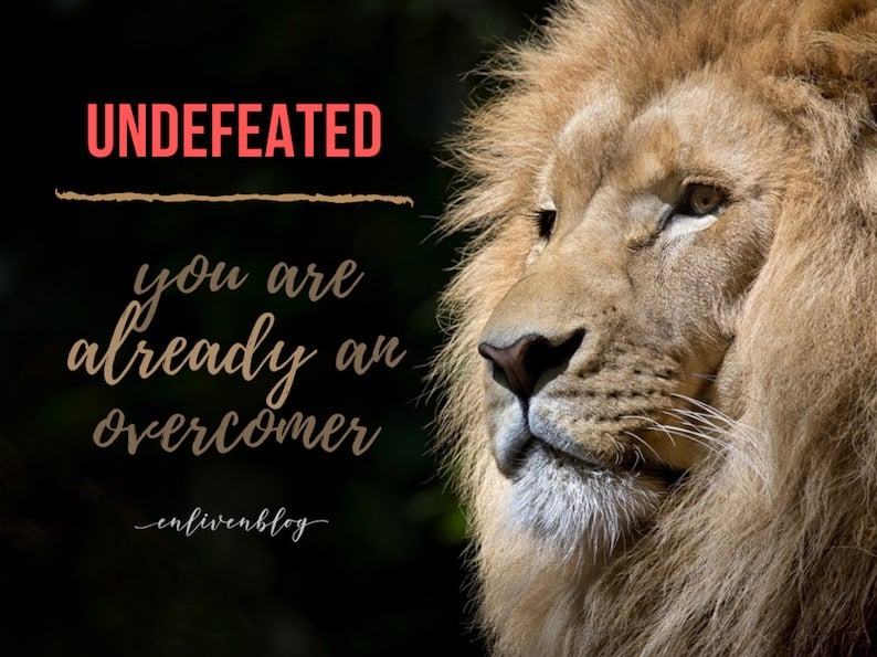 """Face of Lion, Text """"Undefeated: You are Already an Overcomer"""""""