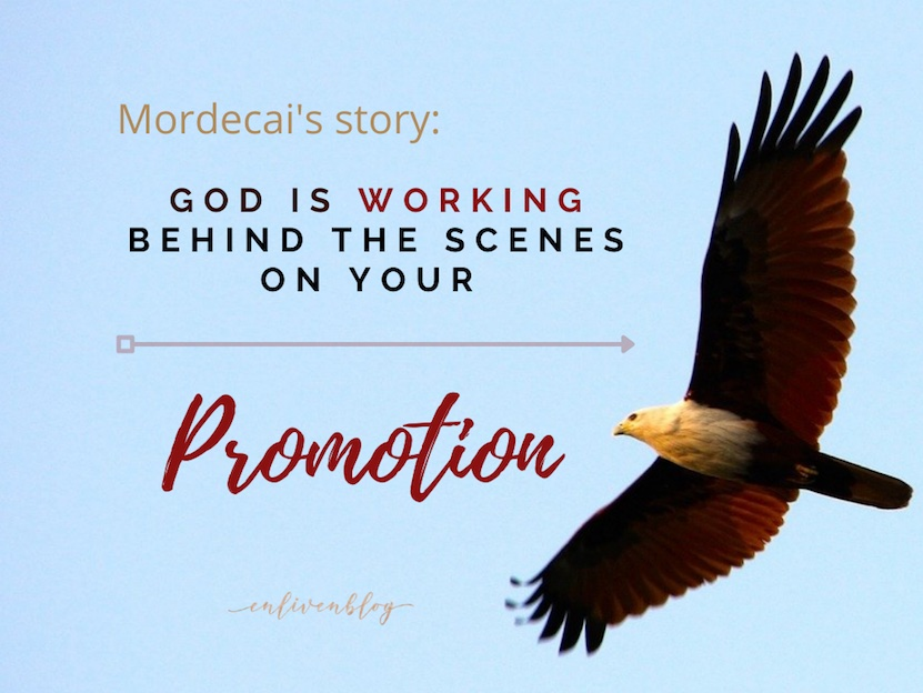 Picture of eagle flying with quote